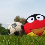 German George ist treuer Fan der deutschen Nationalmannschaft